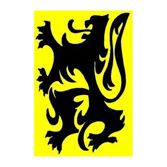 Feestartikelen Vlaanderen vlag
