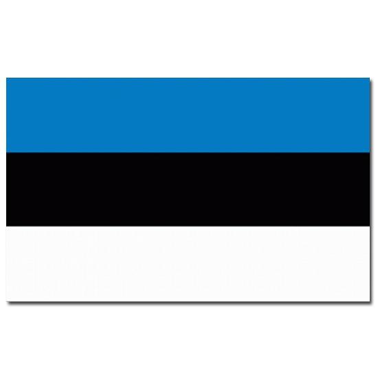 Feestartikelen vlag Estland