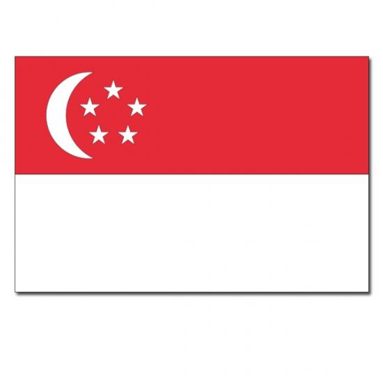 Feestartikelen vlag Singapore